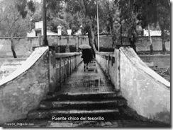 puente tesorillo